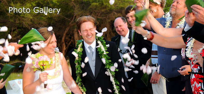 Photo Gallery 2 Gold Coast Luxury Villas