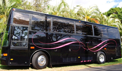 Executive Limousine Coach